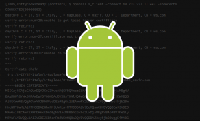 the-next-big-thing-for-android-malware-is-plugin-frameworks-