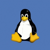 Five-Year-Old Bait-and-Switch Linux Security Flaw Patched Image
