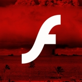 Senator Asks US Government to Remove Flash From Federal Sites, Computers Image
