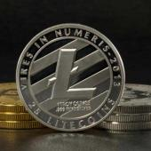 Litecoin, Not Monero, Is the Second Most Dominant Dark Web Currency Image