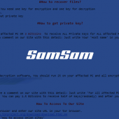 New SamSam Variant Requires Special Password Before Infection Image