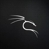 Kali Linux 2020.4 switches the default shell from Bash to ZSH Image