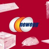 Banks Sue Computer Parts Site Newegg for Participation in Massive Fraud Scheme Image