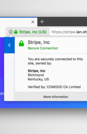 Extended Validation (EV) Certificates Abused to Create Insanely Believable Phishing Sites Image