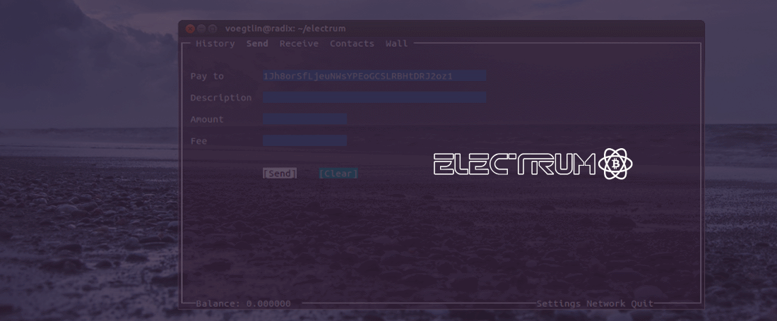 Electrum wallet and logo