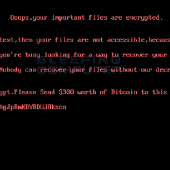 The DiskWriter or UselessDisk BootLocker May Be A Wiper Image