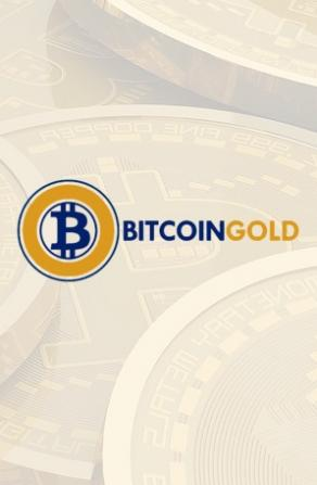 Hacker Makes Over $18 Million in Double-Spend Attack on Bitcoin Gold Network Image