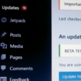 LOL: BabaYaga WordPress Malware Updates Your Site Image