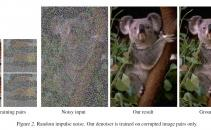 New AI Algorithm Can Fix Grainy Images Without Looking at Clean Photos Image