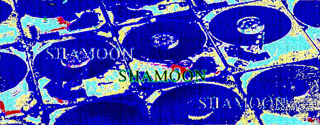 Shamoon_headpic