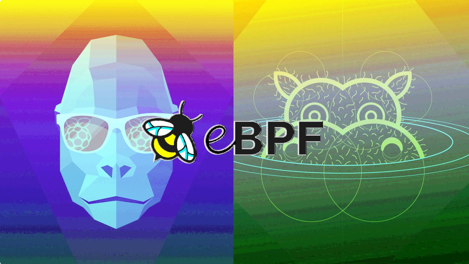 Linux eBPF bug gets root privileges on Ubuntu - Exploit released