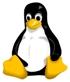 linux_penguin.jpg