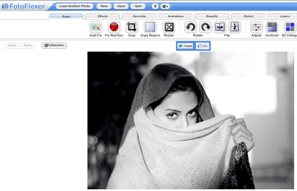 fotoflexer-image-editing-tool.jpg