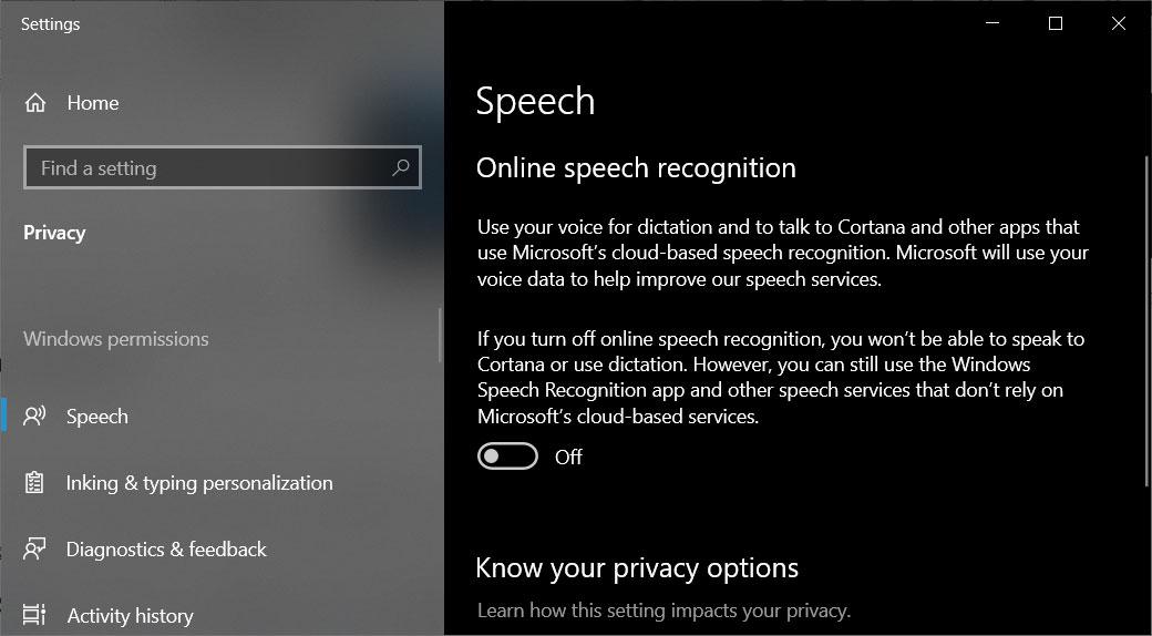Disable online speech recognition