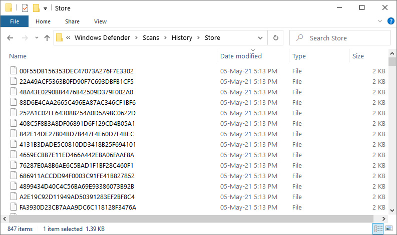 Windows Defender folder filled with small files