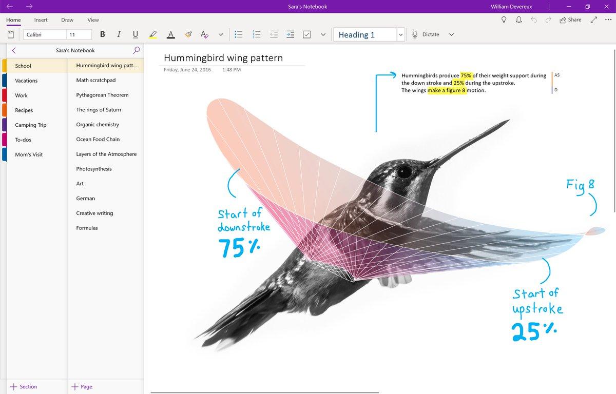 OneNote para Windows 10 recebe grande atualização; veja o que há novo! 3