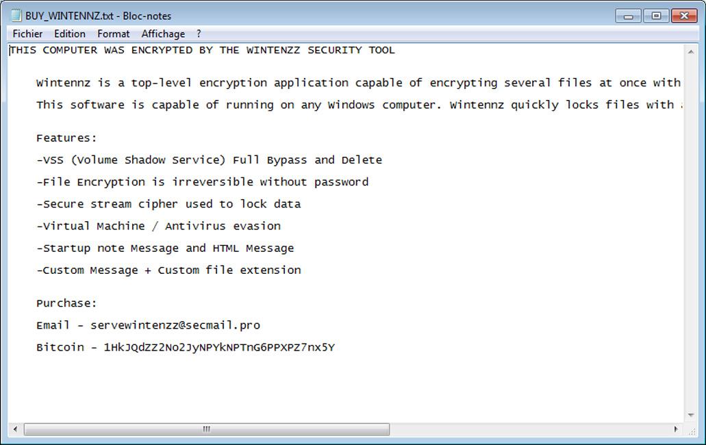 Wintenzz Security Tool