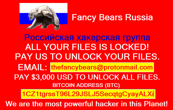 Ransomware ours fantaisie