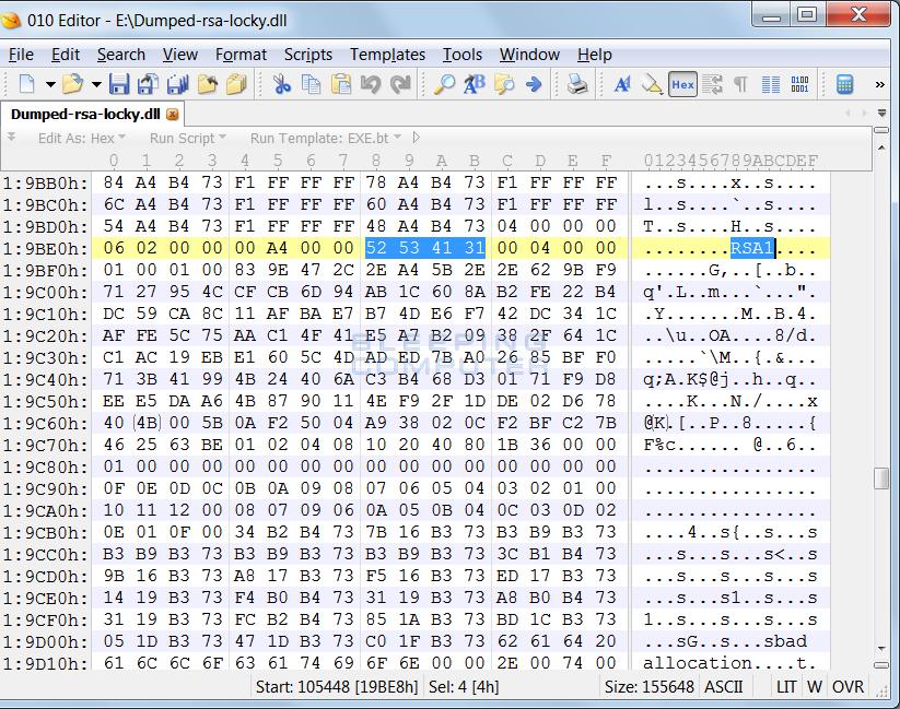 Embedded RSA Key