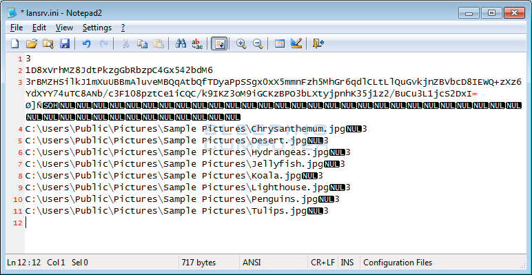 Lansrv.ini File showing the RSAEncrypted AES Key
