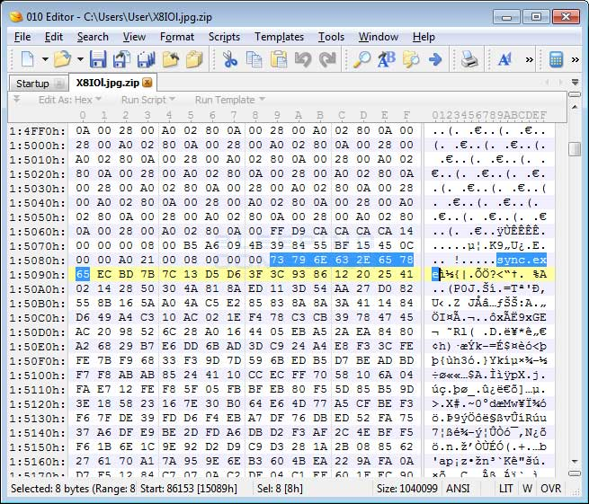 Hex Editor View of the Image File
