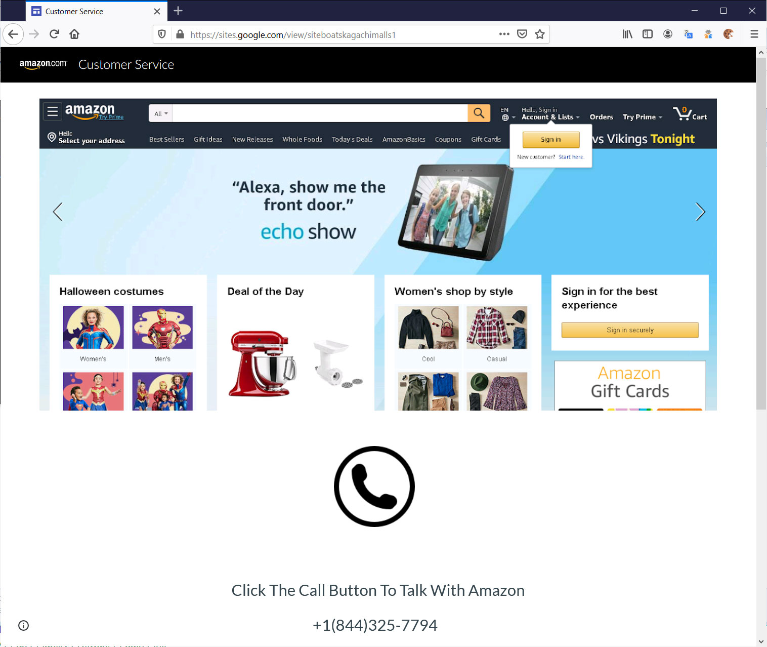 Fake Amazon Support Site