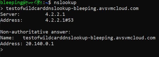 Resolución de DNS comodín para avsvmcloud [.] Com