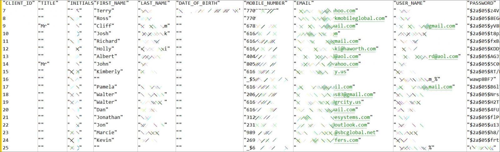 Échantillon fortement expurgé de données ParkMobile volées