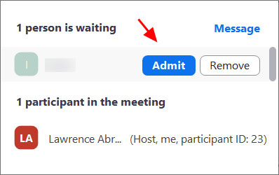 Admit a person into the meeting