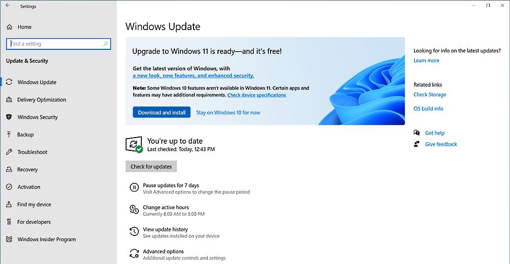 Windows 11 enterprise feature update