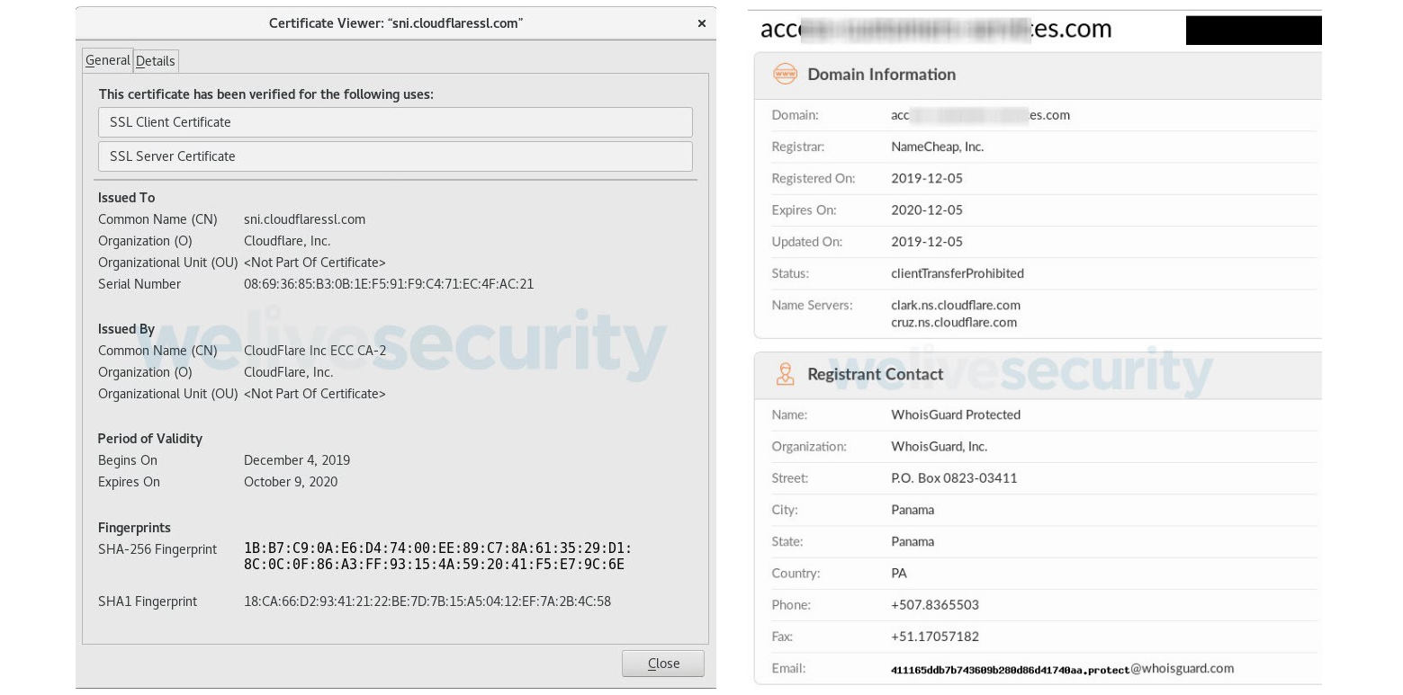 Phishing domain SSL certificate and Whois info