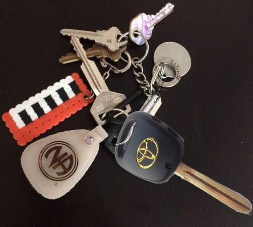 Higgins family lost keys