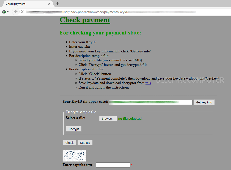 Data Keeper ransom payment page