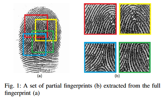Partial fingerprints