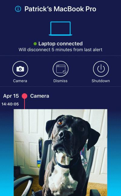 Do Not Disturb iOS companion app