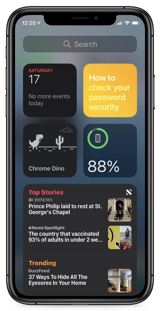 Dinosaur Game widget added to iOS home screen