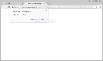 XSETUP.exe Trojan Image