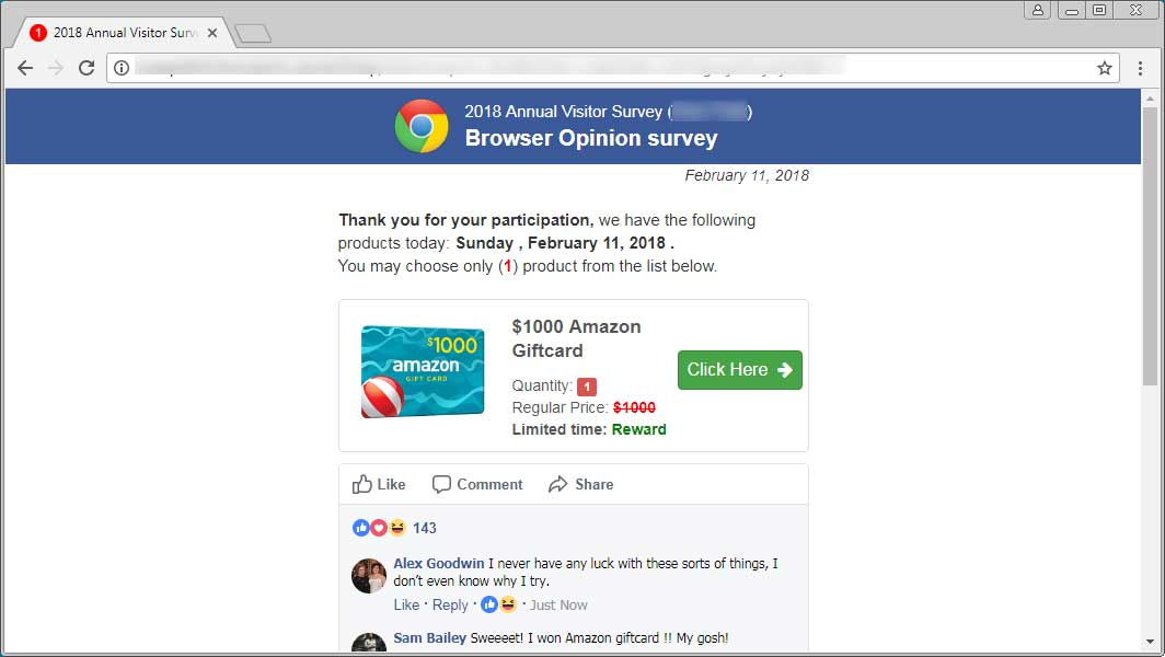 Browser Opinion Survey