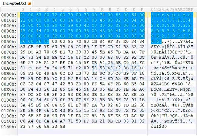 Hex Editor showing Encrypted File