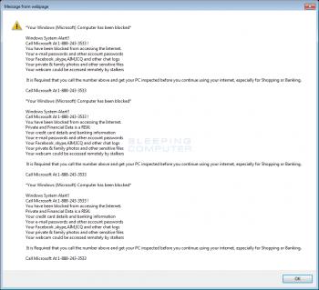 Your Windows (Microsoft) Computer has been Blocked Alert  Image