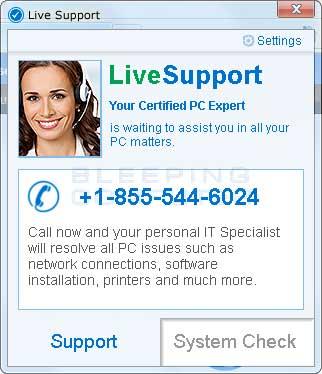 LiveSupport screen shot