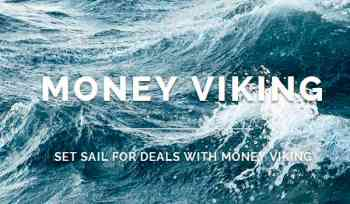 Money Viking Image