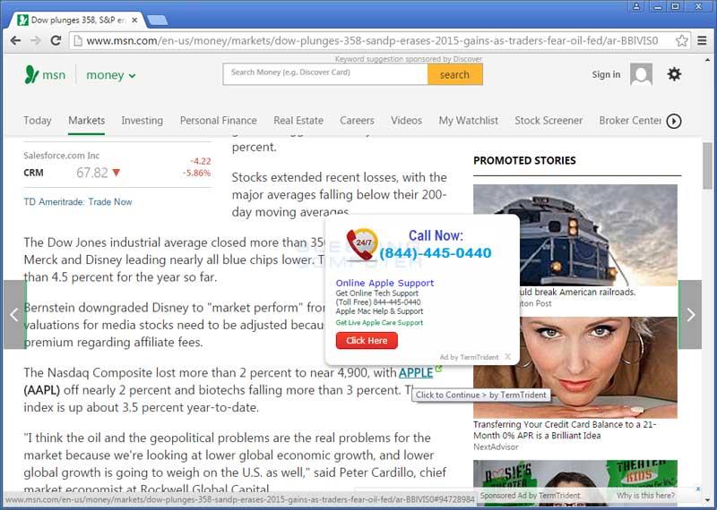 TermTrident ads on MSN