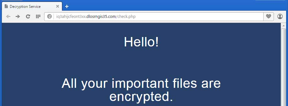 decryption-service-header.jpg