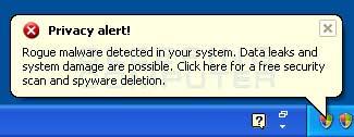 Fake Privacy Alert